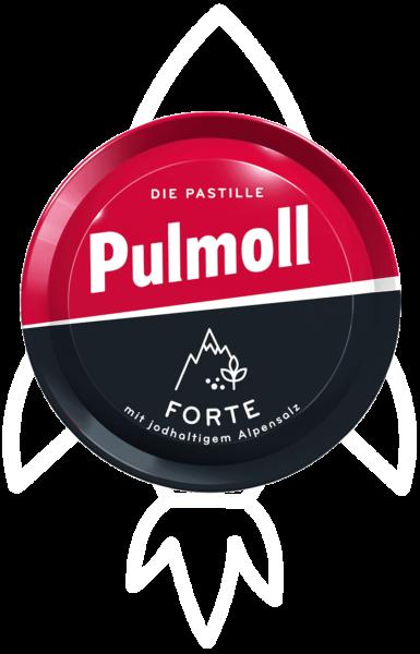 Karriere bei Pulmoll